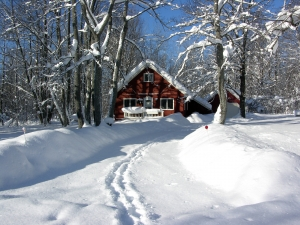 Blog -winter-snow-storm-2.14.2014.jpg