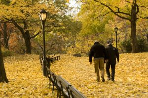 autumn-in-new-york-4-917237-m.jpg